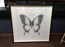 Butterfly pic on pins